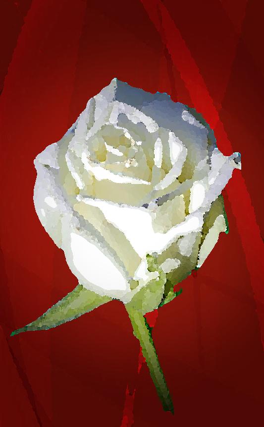 Rose extrait